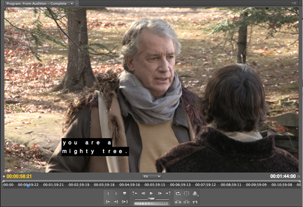 Adobe Premiere Pro Caption Display