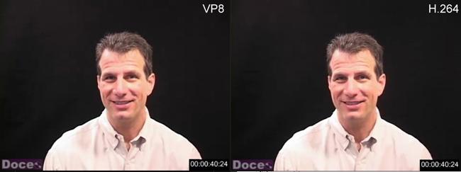 Ozer VP8 Figure 1